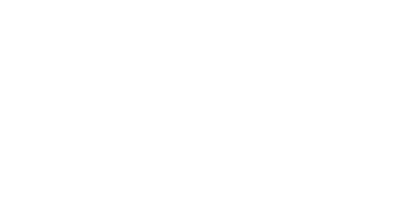 Purple Parrot | Hattiesburg, MS